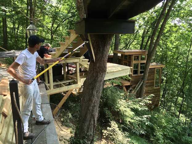 staining treehouse